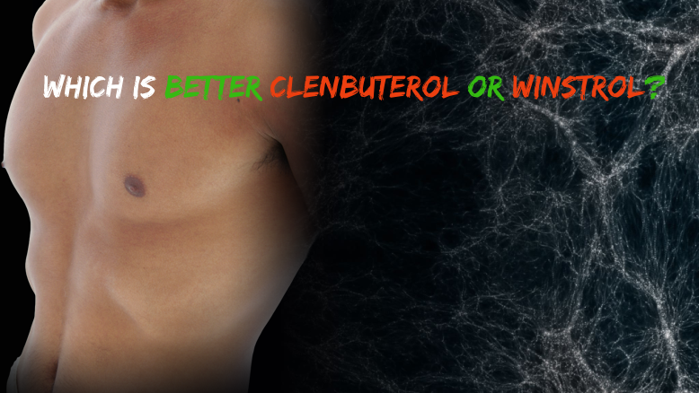 Which Is Better Clenbuterol or Winstrol? - Culture11